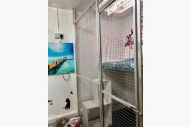 Kennels/cattery For Sale - Photograph 19