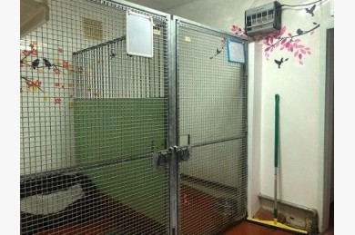 Kennels/cattery For Sale - Photograph 18